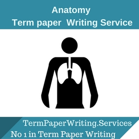 Anatomy Term Paper Writing Service