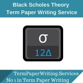 Black Scholes Theory Term Paper Writing Service