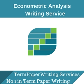 Econometric Analysis Writing Service
