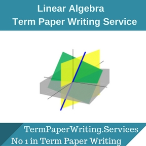 Linear Algebra Term Paper Writing Service