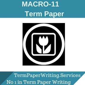 MACRO-11 Term Paper