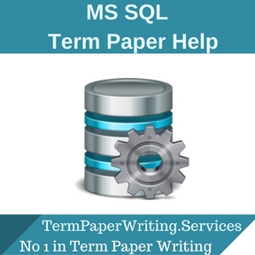 MS SQL Term Paper Help